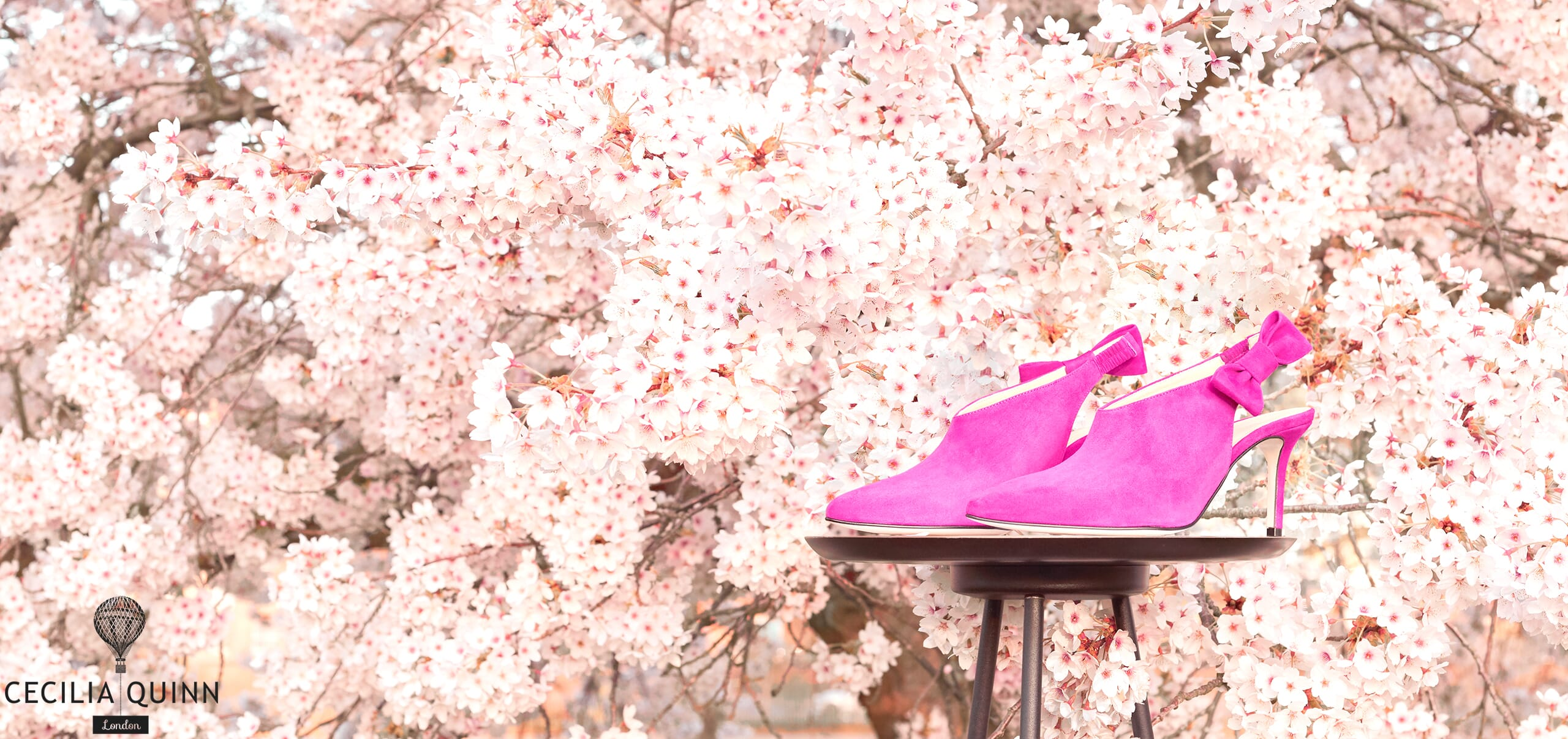 Pink Heels with Blossom